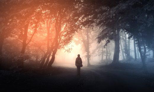 光に向かって森の中を歩く人